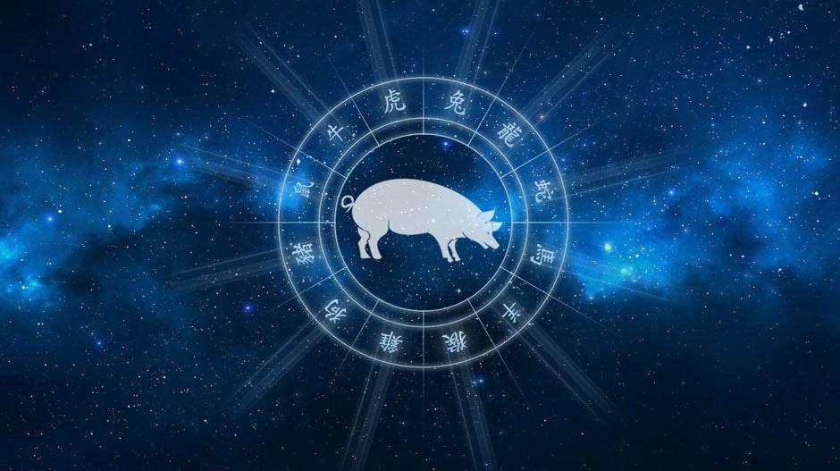 Свинья гороскоп