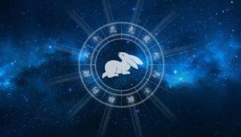 Восточный гороскоп на 2021 год для Кролика (Кота) мужчины