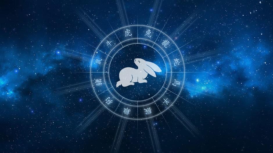 Кролик (Кот) гороскоп