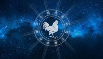 Восточный гороскоп на 2021 год для Петуха мужчины