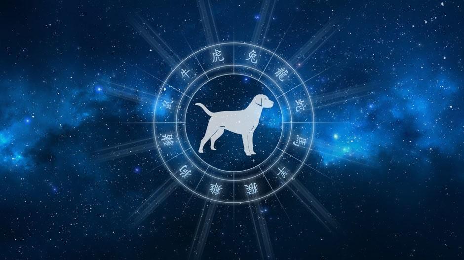 Собака гороскоп