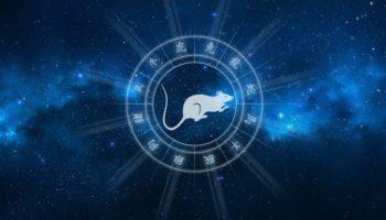 Восточный гороскоп на 2021 год для Крысы мужчины