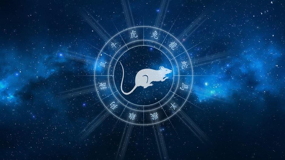 Крыса гороскоп